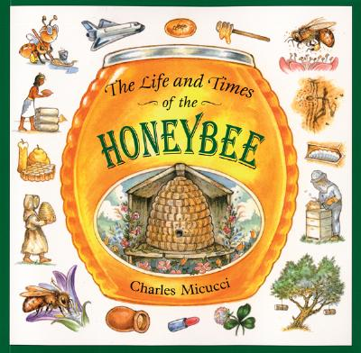 The Life and Times of the Honeybee By Micucci, Charles